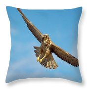 Exit Screen Right Throw Pillow