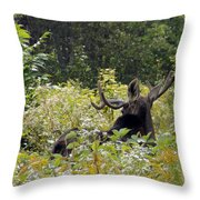 Exit Stage Right Throw Pillow