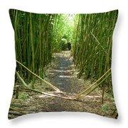 Exlporing Maui's Bamboo Throw Pillow