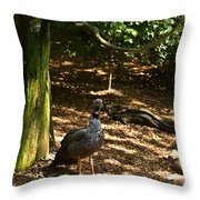 Exotic Bird 2 Throw Pillow