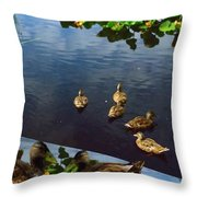 Exotic Birds Of America Ducks In A Pond Throw Pillow