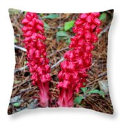 Exotic Flower Or  Throw Pillow