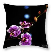 Exotic Orchid 6 Throw Pillow