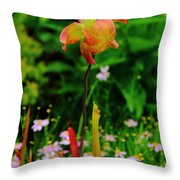 Exotic Orchid Throw Pillow