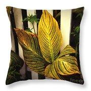 Exotica Nova Angliae Throw Pillow