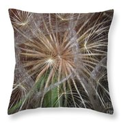 Experience The Dandelion Throw Pillow