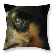 Experienced Guard Throw Pillow