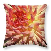Exploding On The Scene Throw Pillow