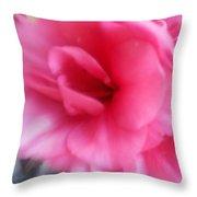 Exploding Pink Azaleas Throw Pillow