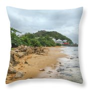 Exploring The Beach Throw Pillow