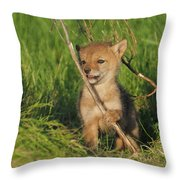 Exploring The Outside World Throw Pillow