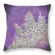 Expodential Growth Throw Pillow