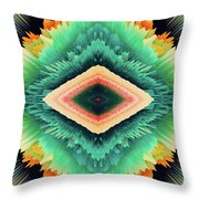 Exponential Flare Throw Pillow
