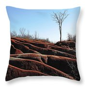 Exposed And Eroded Badlands Throw Pillow