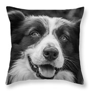 Expression Of A Border Collie Throw Pillow