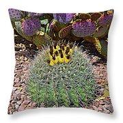 Expressionalism Budding Cactus Throw Pillow