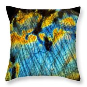 Exquisite Luminescence Throw Pillow