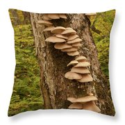 Extended Family Throw Pillow