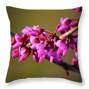 Extending Welcome Throw Pillow
