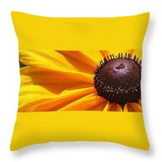 Eye Catcher Throw Pillow