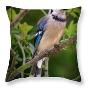 Eye Contact Throw Pillow