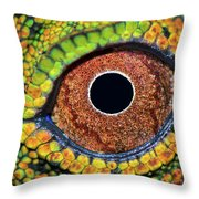 Eye Dragon Forest Throw Pillow