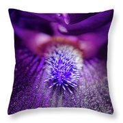 Eye Of Iris Nature Photograph Throw Pillow