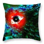 Eye Of Paradise Throw Pillow