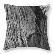 Eye Of Seven Throw Pillow