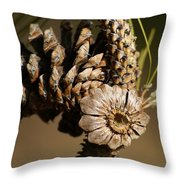 Eye Of The Cone Throw Pillow