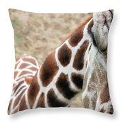 Eye Of The Giraffe. Throw Pillow