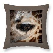 Eye Of The Giraffe Throw Pillow