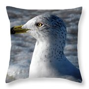 Eye Of The Gull Throw Pillow by Robb Stan