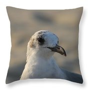 Eye Of The Gull Throw Pillow