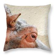Eye Of The Hippo Throw Pillow
