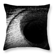 Eye Of The Peacock Feather Throw Pillow