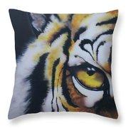 Eye Of Tiger Throw Pillow