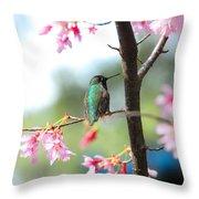 Eye On Spring Throw Pillow