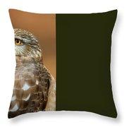 Eye On The Fuchsia Throw Pillow