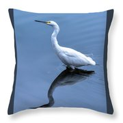 Eye On The Sky Throw Pillow