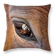 Eye See You Too Throw Pillow