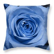 Eye Wide Open Throw Pillow