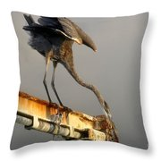 Eyeing The Catch Throw Pillow