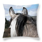 Eyeing The Distance Throw Pillow