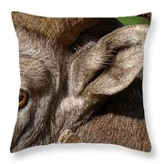Eyes Are The Place To Start... Throw Pillow