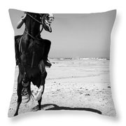 Eyes Lined Throw Pillow