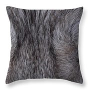 Eyes Of A Wolf Throw Pillow