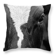 Eyes Of The Cow Throw Pillow