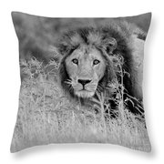 Eyes Of Uncertainty  Throw Pillow