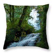 Eyes Over The Flowing Water Throw Pillow